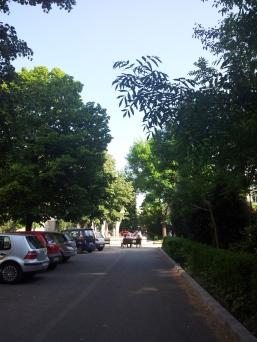 Drumul spre scoala